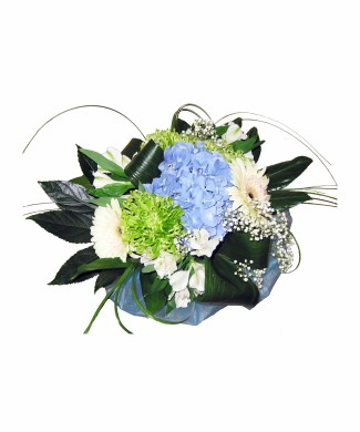 Bouquet of blue hydrangeas and white gerbera