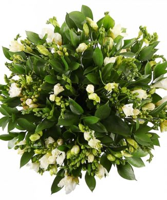Bouquet of white freesias