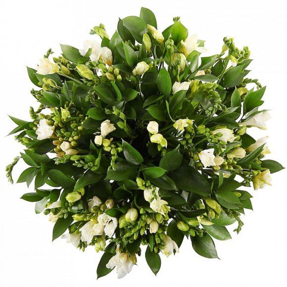 Bouquet of white freesias
