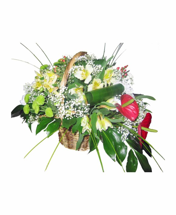 flowers basket of anthurium and eustoma