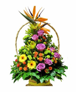 flowers basket of strelizia, gerberas and mix of roses