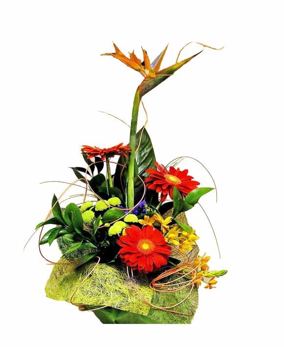 corporate floral arrangement of strelizia and orange gerberas