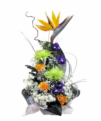 corporate flowers arrangement of strelizia, iris, cloves and chamomiles
