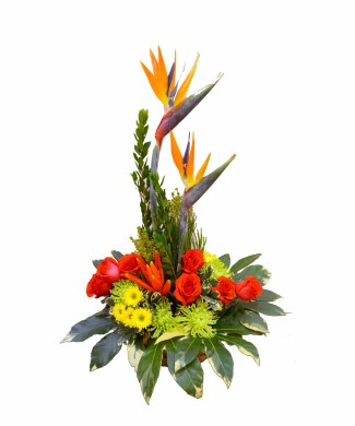 corporate flowers arrangement of chrysanthemums, strelitzia and hermini