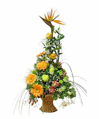 corporate flowers arrangement of roses, strelizia and gerbers