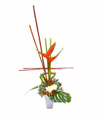 corporate flowers strelizia and berries of St. John's wort