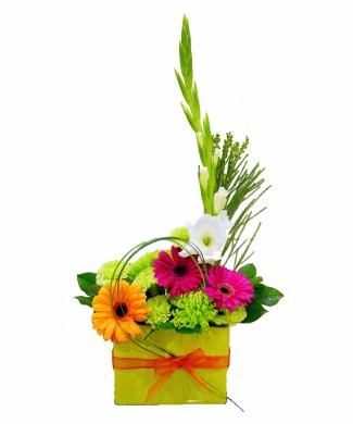 corporate flowers arrangement of mixed color gerberas
