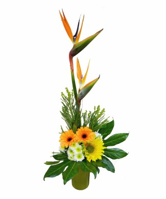 bouquet of strelizia, gerberas and sunflower