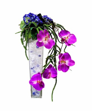 corporate flowers arrangement of pink balanopsis
