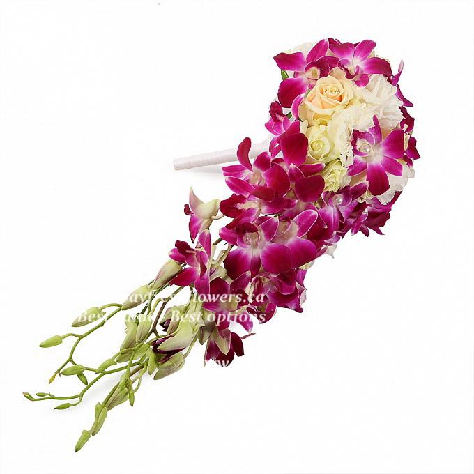 Купить букет орхидей дендробиум розовый 51 шт