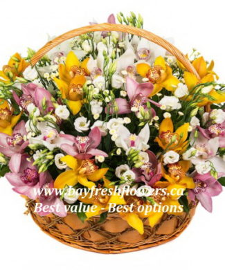 flower basket of three types of orchids