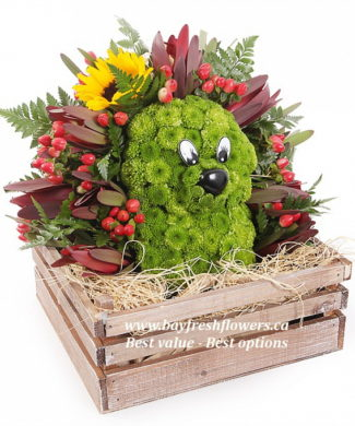 toys from flowers - hedgehog