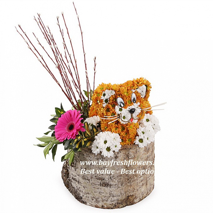 Kitten - Toys from flowers Buy in Vancouver. Fresh flowers delivery ...