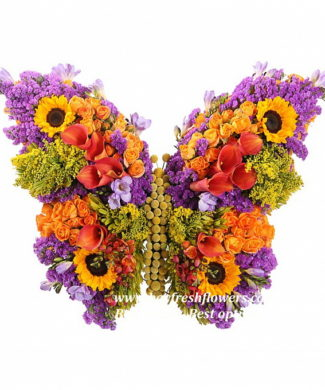 toys from flowers - butterfly