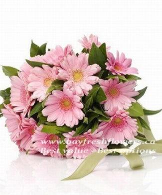 Pink gerbers bouquet