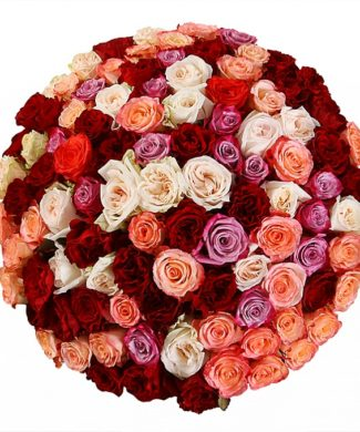 2011 Huge bouquet of roses - mix