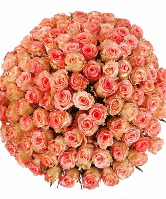 2006 Huge bouquet of roses - pink
