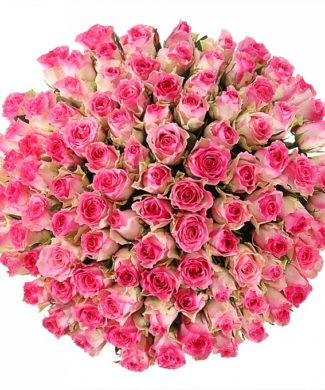 2004 Huge bouquet of roses - Pink