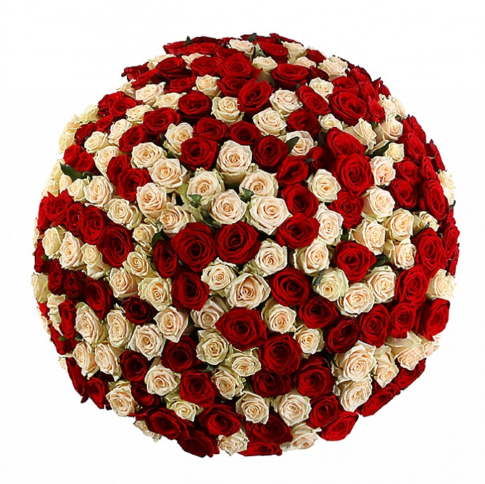 Impressive bouquet of roses - extra large - 100 stems Buy in ...