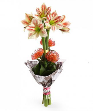 bouquet of fresh flowers with amaryllis