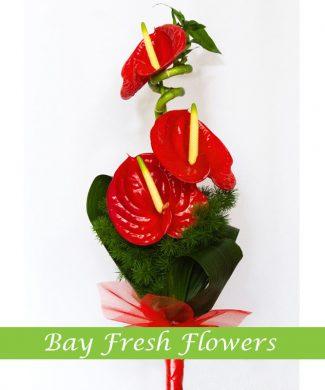 man's bouquet of anthuriums