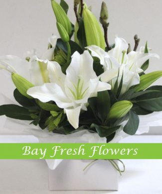 Sympathy arrangement of white lilies