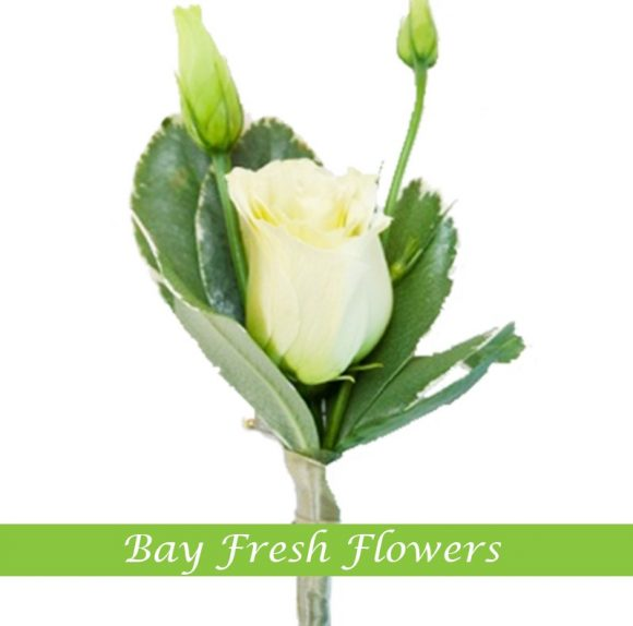 White rose - Groom boutonniere