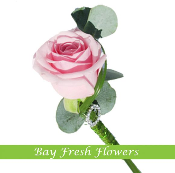 Groom boutonniere - Pink rose
