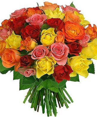 2dozens roses