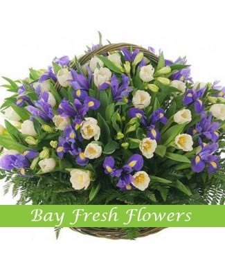 White tulips and irises in a basket