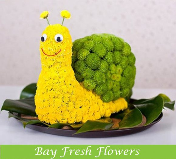 Smiling snail gift of flowers