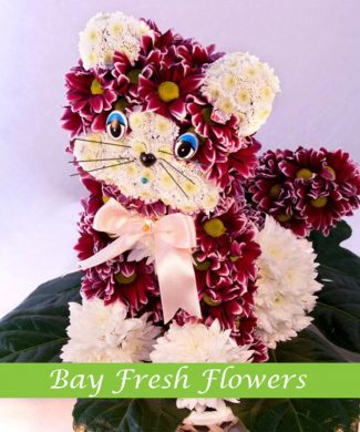 red cat created from flowers