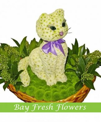 White kitty of flowers in a basket