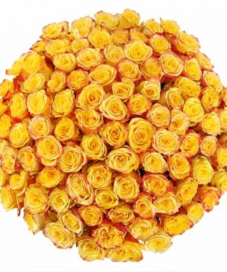 2024 Huge bouquet of roses - yellow