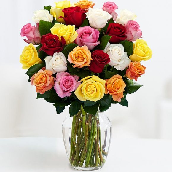 mixed color roses 12 stems