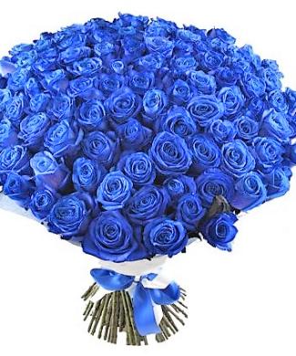 201930 100+ blue long stem roses